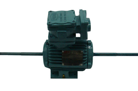 Special Double Shaft Motor